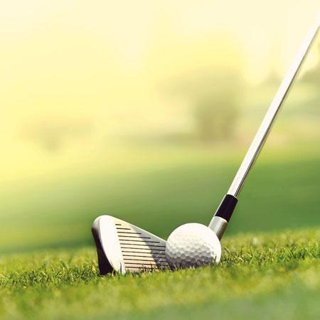 Nissan Golf Ball